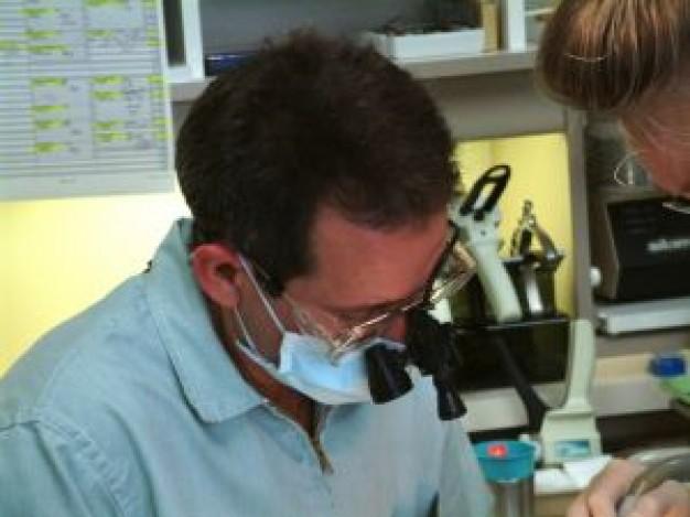 dentiste-discount